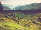 Misty summer mountain hills landscape. Filtered image:cross processed vintage effect.